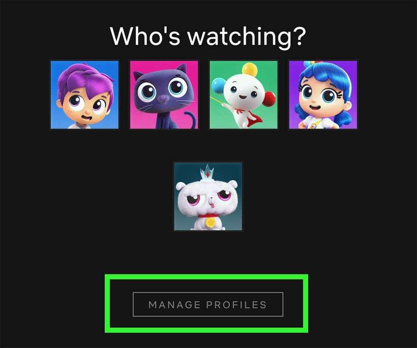 Netflix profili 1