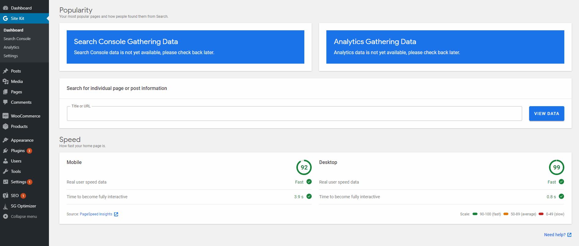Rezultati PageSpeed Insights.